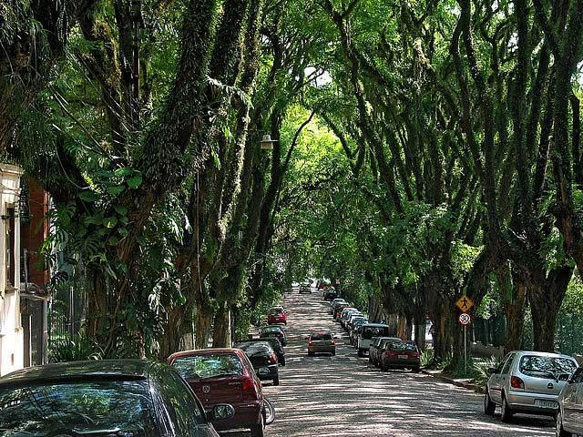 Gonçalo de Carvalho Street, Brazil
