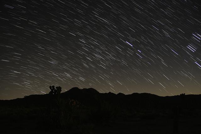 Star Gazing in Joshua Tree National Park