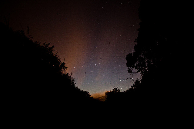 Star Gazing in Headlands