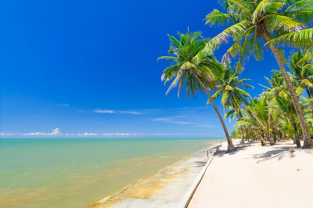 20 Great Spots to Vacation in the Tropics