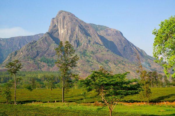 Mulanje Massif – Africa's Largest Unbroken Climbing Wall
